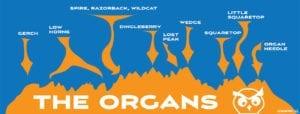 Organ Mountain