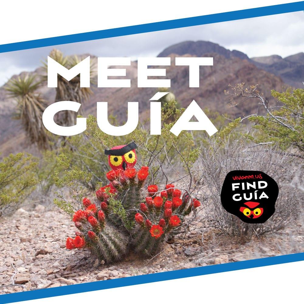 Meet Guia